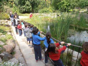 Razones para que los niños aprendan a amar la naturaleza