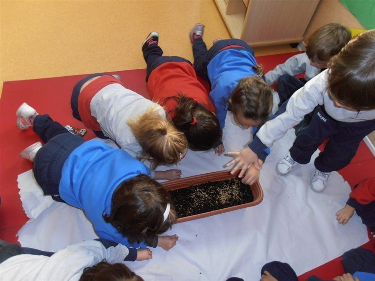 Prevención y detección de dificultades en el entorno escolar