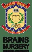 brains nursary schools escudo